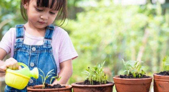 Dieta mediterranea: un webinar gratuito per educare alla sostenibilità